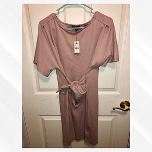 NWT Express Mauve Dress!